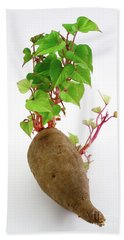 Sweet Potato Hand Towel by Gaspar Avila