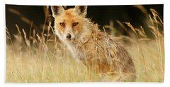The Catcher In The Grass - Wild Red Fox Hand Towel by Roeselien Raimond