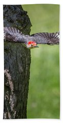 The Red Bellied Woodpecker Hand Towel by Bill Wakeley