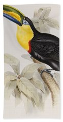 Toucan Hand Towel by John Gould