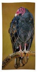Turkey Vulture Hand Towel by Nikolyn McDonald