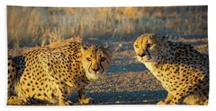 Two Cheetahs Hand Towel by Inge Johnsson