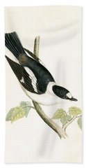 White Collared Flycatcher Hand Towel by English School