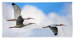White Ibis Flock Hand Towel by Mike Dawson