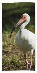 White Ibis On A Walk  Hand Towel by Saija  Lehtonen