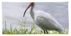 White Ibis  Hand Towel by Saija  Lehtonen