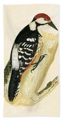 White Rumped Woodpecker Hand Towel by English School
