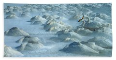 Whooper Swans In Snow Hand Towel by Teiji Saga and Photo Researchers
