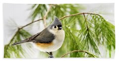 Winter Pine Bird Hand Towel by Christina Rollo