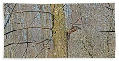 Woodcock's View Of The Forest, In-flight Hand Towel by Asbed Iskedjian