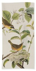 Yellow-breasted Warbler Hand Towel by John James Audubon