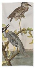 Yellow Crowned Heron Hand Towel by John James Audubon