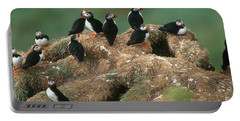 Atlantic Puffins Portable Battery Charger by Art Wolfe