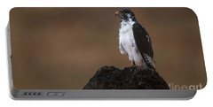 Augur Buzzard Portable Battery Charger by Art Wolfe