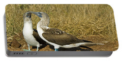 Blue-footed Booby Pair Portable Battery Charger by William H. Mullins