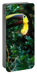 Chestnut-mandibled Toucan Portable Battery Charger by Art Wolfe