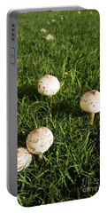 Field Of Mushrooms Portable Battery Charger by Jorgo Photography - Wall Art Gallery