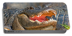 American Alligator Portable Battery Charger by Millard H. Sharp