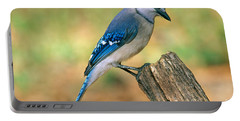 Blue Jay Portable Battery Charger by Millard H. Sharp