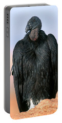 California Condor Portable Battery Charger by Art Wolfe