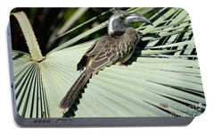 African Grey Hornbill Portable Battery Charger by George Atsametakis