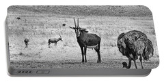 African Plains Portable Battery Charger by Douglas Barnard