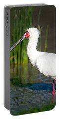 African Spoonbill Platalea Alba Portable Battery Charger by Panoramic Images