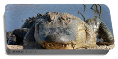 Alligator Approach Portable Battery Charger by Al Powell Photography USA