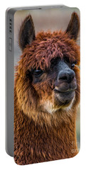 Alpaca Close-up On Utah Farm Portable Battery Charger by Gary Whitton
