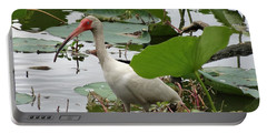 American White Ibis In Brazos Bend Portable Battery Charger by Dan Sproul
