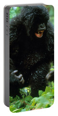 Angry Mountain Gorilla Portable Battery Charger by Art Wolfe