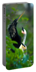 Anhinga Adult With Chicks Portable Battery Charger by Mark Newman
