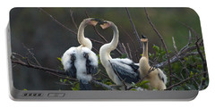 Baby Anhinga Portable Battery Charger by Mark Newman