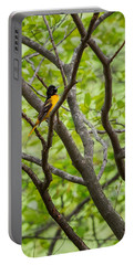 Baltimore Oriole Portable Battery Charger by Bill Wakeley