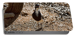 Banded Lapwing Portable Battery Charger by Douglas Barnard