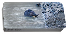 Beaver Chews On Stick Portable Battery Charger by Chris Flees