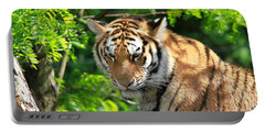 Bengal Tiger Portrait Portable Battery Charger by Dan Sproul