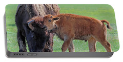 Portable Battery Charger featuring the photograph Bison With Young Calf by Bill Gabbert