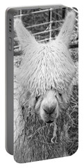 Black And White Alpaca Photograph Portable Battery Charger by Keith Webber Jr