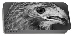 Black And White Hawk Portrait Portable Battery Charger by Dan Sproul