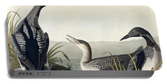 Black Throated Diver  Portable Battery Charger by John James Audubon