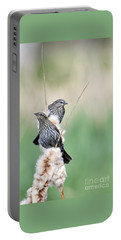 Blackbird Pair Portable Battery Charger by Mike  Dawson