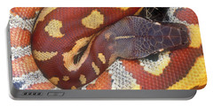 Blood Python Portable Battery Charger by Art Wolfe