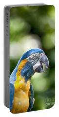 Blue And Gold Macaw V2 Portable Battery Charger by Douglas Barnard