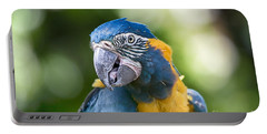 Blue And Gold Macaw V3 Portable Battery Charger by Douglas Barnard