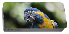 Blue And Gold Macaw V5 Portable Battery Charger by Douglas Barnard