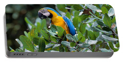 Blue And Yellow Macaw Portable Battery Charger by Art Wolfe