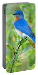 Bluebird Joy Portable Battery Charger by William Jobes
