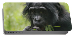 Bonobo Eating Portable Battery Charger by Dan Sproul