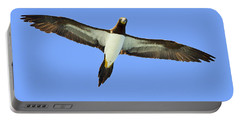 Brown Booby Portable Battery Charger by Tony Beck